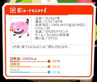 ぷっちょ7号_20090527生後395日.jpg